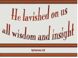 widsom insight